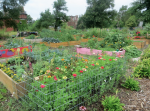 Brush Park Community Garden